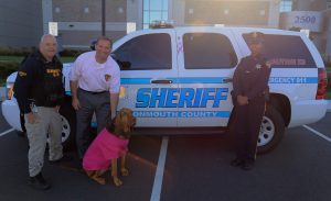 mcso-pink-2